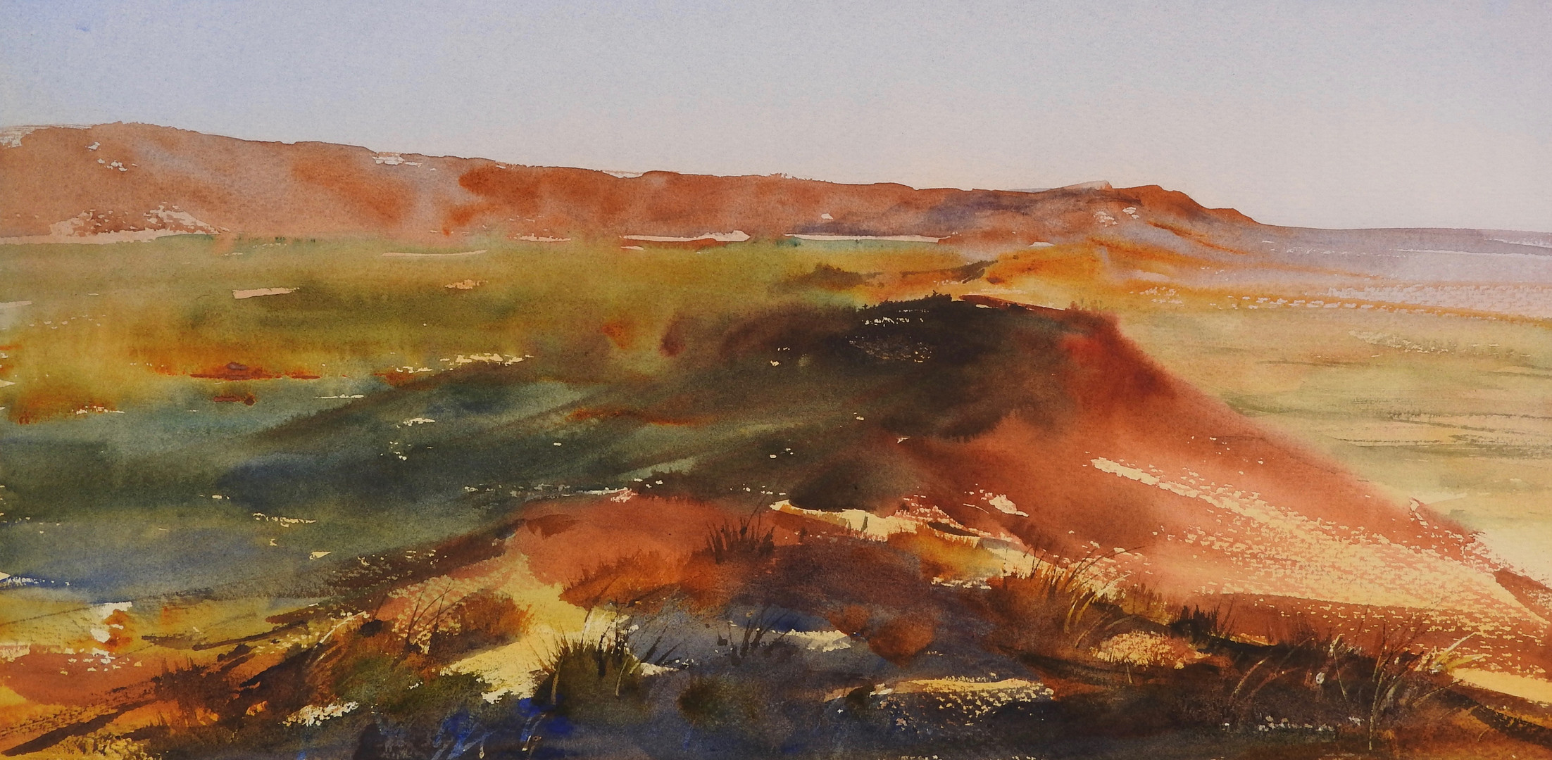Watercolour Big Bush AM - Sue Hibbert.jp