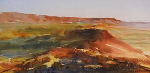 T2 Watercolour - Big Brush Painting (AM)