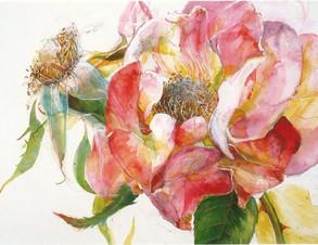 T1 Portrait of Plants – Watercolour