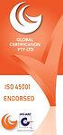 Global Logo Safety 45001 JAS-ANZ Version 2 2020.jpg