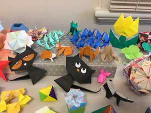 T2 Origami Animals, Gardens and Models