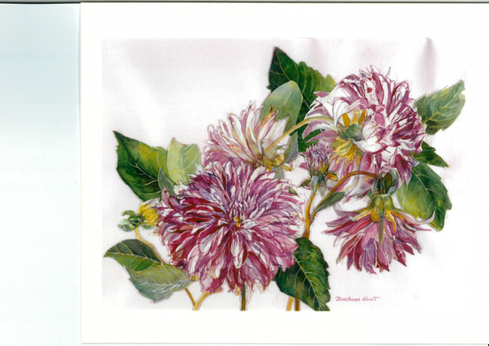 Portrait of Plants Barbara Hunt