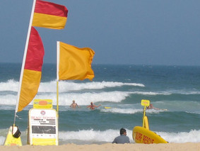 swim_flags.jpg