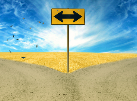 Two Roads Diverge:  Traditional vs Independent Publishing