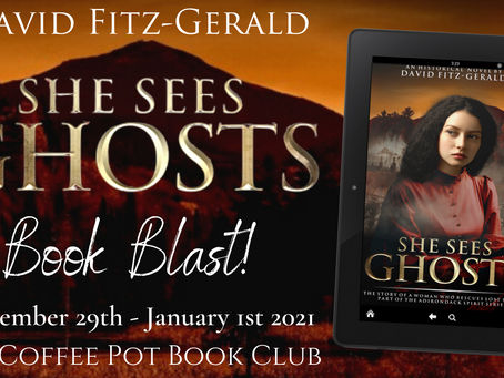 Book Blast: She Sees Ghosts by David Fitz-Gerald