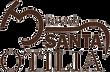 logo Santa Otilia - Vicunha.png