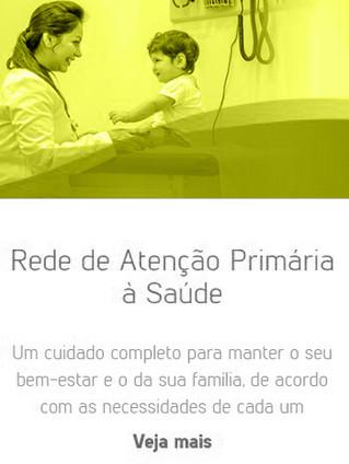 Rede de Atenção Primária à Saúde