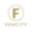 femcity-logo.png