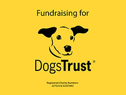 Fundraising for Dogs Trust with cake