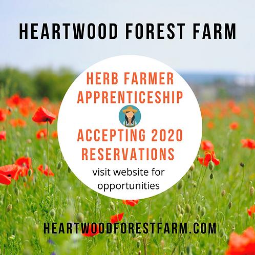 Herb Farmer Apprentice