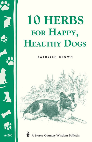 10 Herbs for Happy Heathy Dogs
