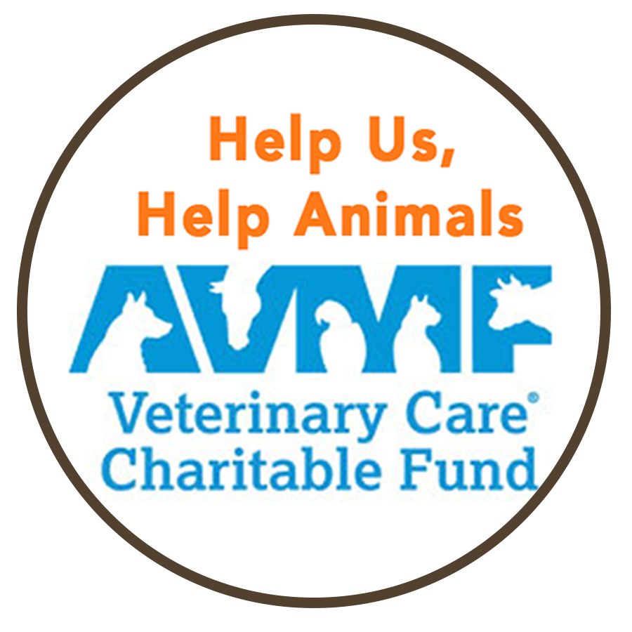Benbow-Vet-Services-Veterinary-Care-Charitable-Fund