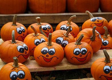 pumpkins-2513228_1920.jpg