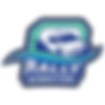 logo app RallyDirector.png