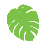 CFF_Logo-Picture-3-lr.png