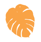 CFF_Logo-Picture-4.png
