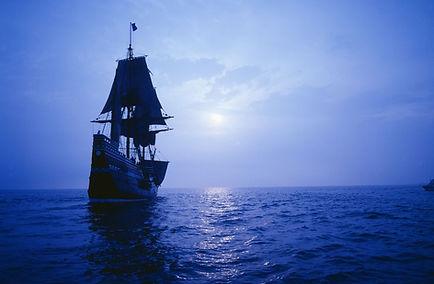Australian Mayflower Society - Apply
