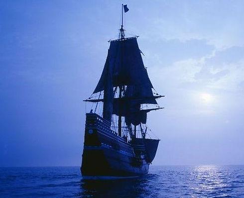 Mayflower Society Australia contact.jpg