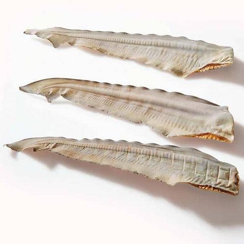 Shark Tails pack of 2 Dog Treats