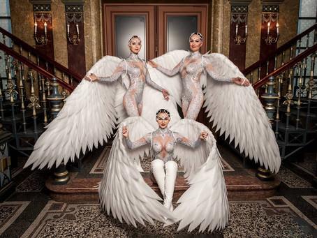 """Neue tänzerische Aufführung """"Paradiesvögel: Higher Love"""""""