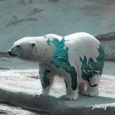 Aquanimal - Bear, Julien Tabet, Digital, 2018