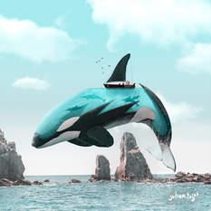 Aquanimal - Orca, Julien Tabet, Digital, 2019