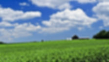 farm_scenery_hd_picture_165984.jpg