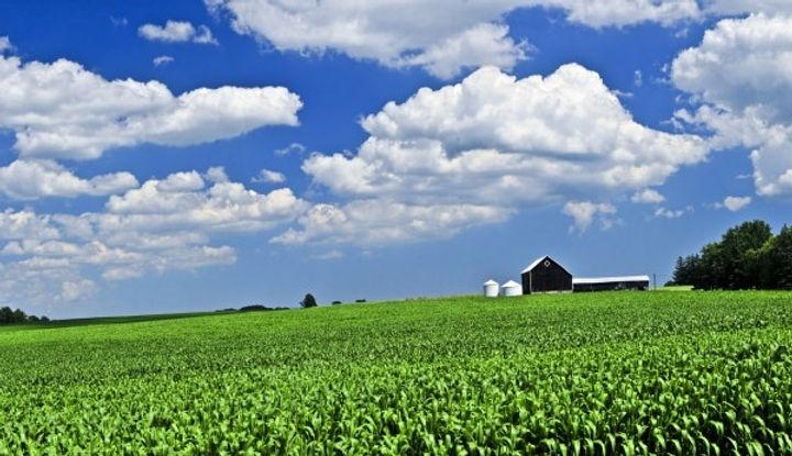 farm_scenery_hd_picture_165984.jpg