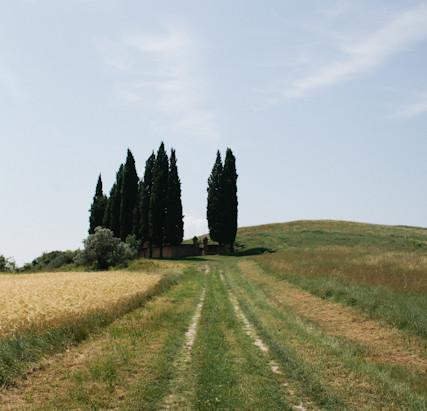 Italy:Tuscany