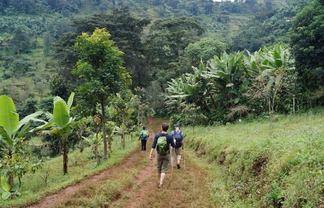 Tanzania – Shirikisha and Mt. Kili