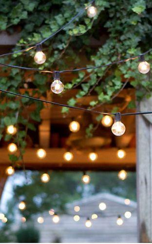 white lights garden
