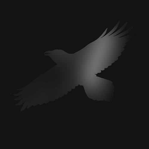 Sigur Ros | Odin's Raven Magic | 2LP