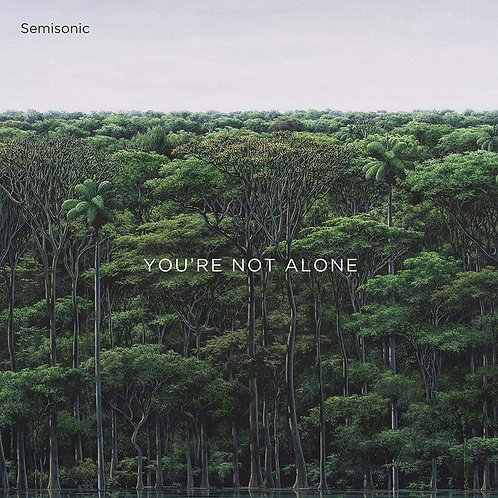 Semisonic | You're Not Alone