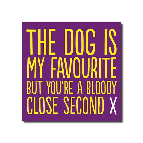 The Dog Is My Favourite