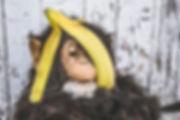 brown-and-black-monkey-with-banana-peel.
