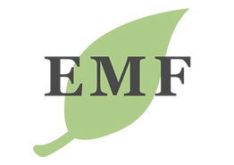 Emerson Montessori Foundation logo, combines a socioeconomically diverse elementary with an emphasis on outdoor experience