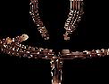 logo-villa-garzoni.webp