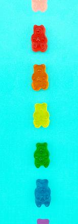 bears3.png