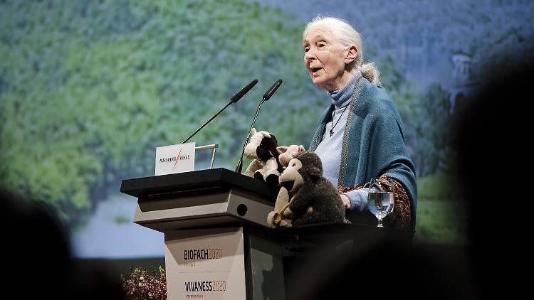 Erwartet von den Menschen mehr Respekt vor der Natur Primatenforscherin Jane Goodall.