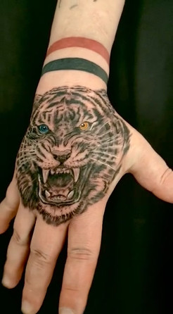 Tiger Tattoo.mov