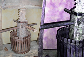torchio-museo-del-vino.png