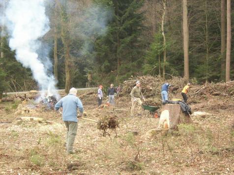 Waldarbeitstag Frondienst.jpg