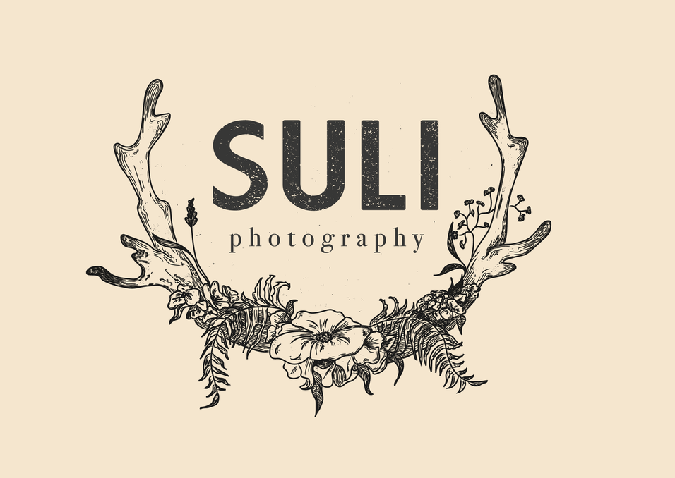 Logo Suli