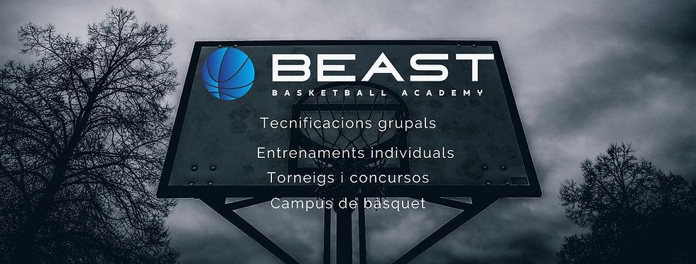 Beast Basketball Academy portada