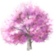 blooming_trees1.png