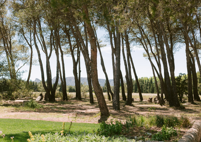 Domaine la Pierre Blanche -84.jpg
