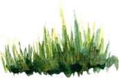 green_trees6.png