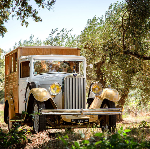 Delage 1931 in Olive Fields