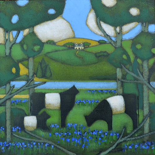 'Galloway Bluebells' Signed Giclée Print