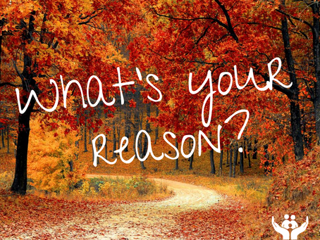 This Fall Season, What's Your Reason